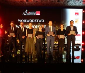 gazele wielkopolskie 2017